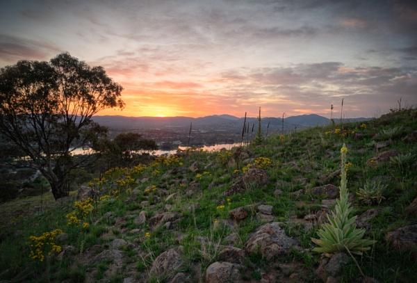 Late Spring, Tuggeranong, Canberra  by BobinAus