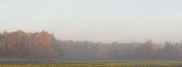 Homeland in the haze f by SauliusR