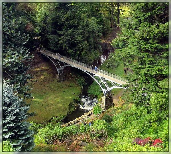 Cragside Bridge by Sylviwhalley