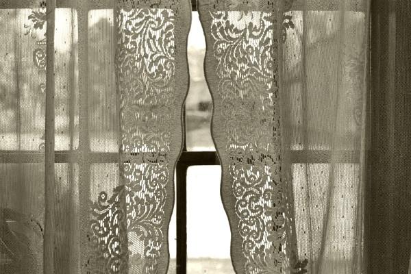 Peering through the curtains by helenlinda