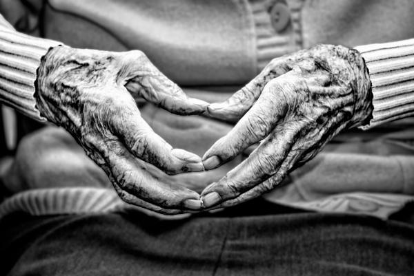 A pair of hands by Johan Vandenberghe