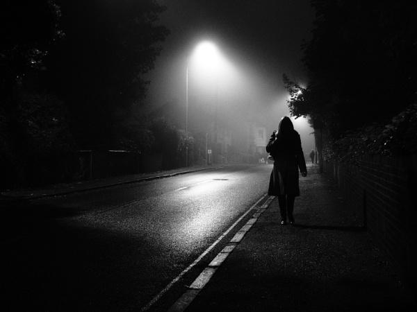 Mist by dannyr
