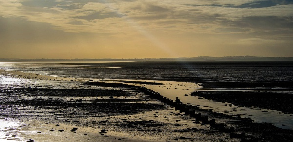 Strangford Lough by cats_123