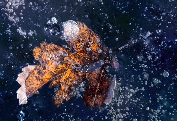 Ice stories by tutye