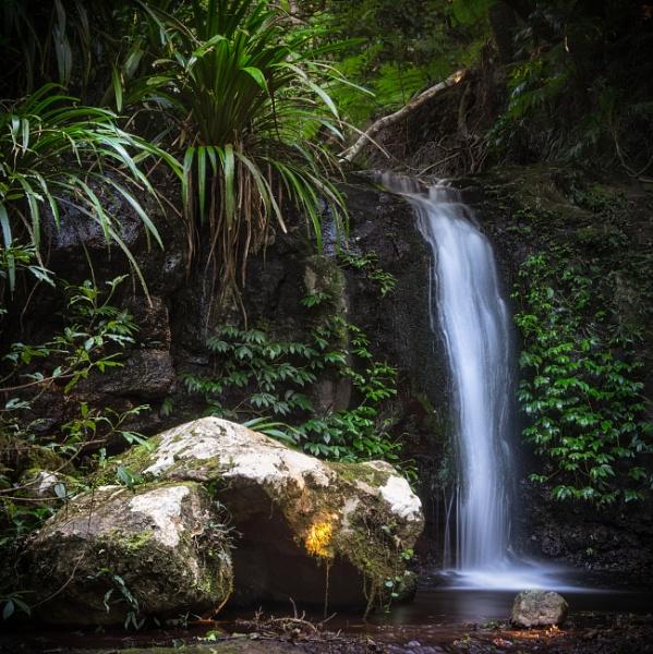 \'Mystery\' Falls, Lamington National Park, Queensland by BobinAus