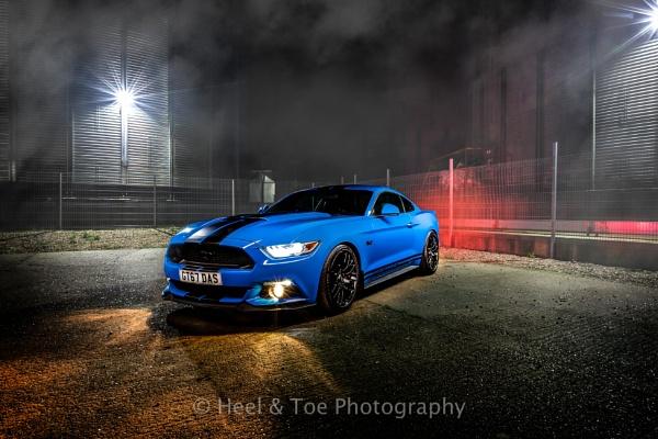 Mustang by matthewwheeler