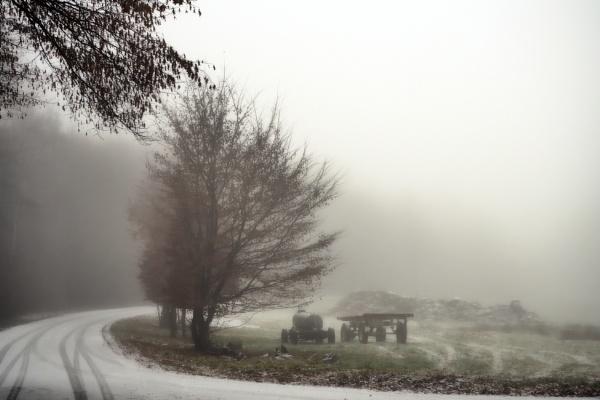 Misty Winter Morning by kw