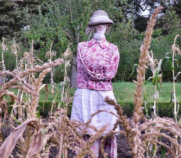 Silly Sunday Scarecrow by adagio