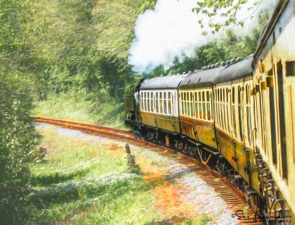 Full steam ahead by SueLeonard
