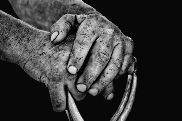 The hands of a farmer by Johan Vandenberghe