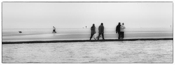 Winter Walks by judidicks