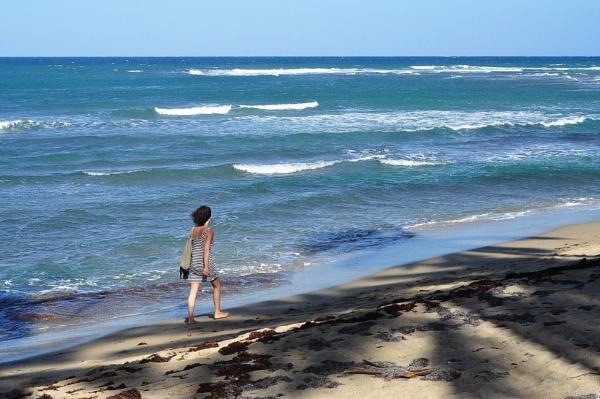 Stranger on the shore by djh698