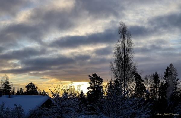 Wintermorning. by kuvailija