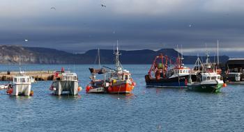 Scene from Lyme Regis Harbour towards Golden Cap