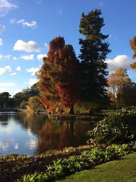 Autumn Colours Kew Gardens London by topcatj