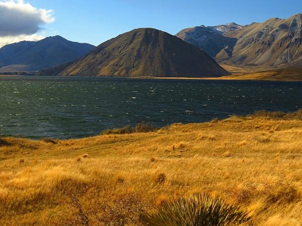 Lake Heron 6 by DevilsAdvocate