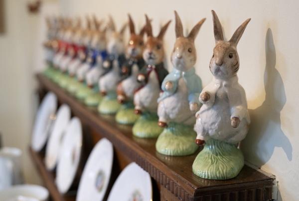 Rabbit, rabbit, rabbit... by dudler