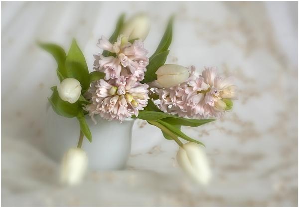 Spring flowers by hibbz