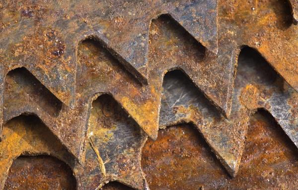 Rusty Bow Saw Blades by iangilmour