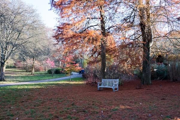 White seat in autumn by PeBeFoTo