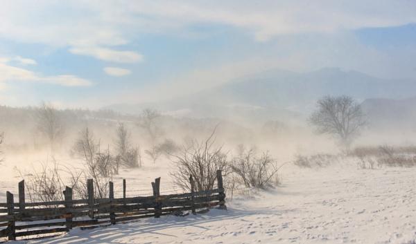 Winter field in a storm in mountains by jordachelr