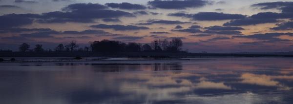 Purple Dawn by adamsa