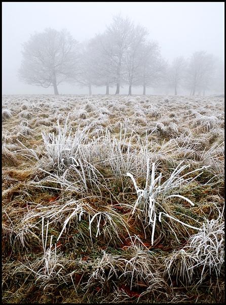 Wintery Shropshire by Niknut