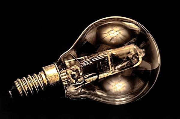 bulb by rocky41