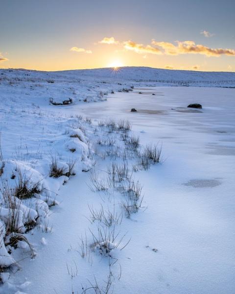 Cold light by Satiny