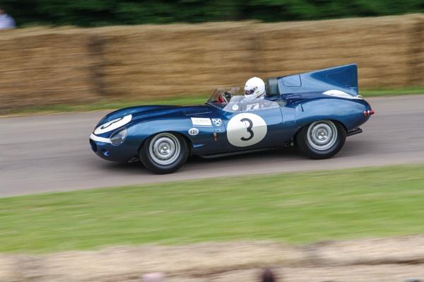 D Type Jaguar by jimmoore1