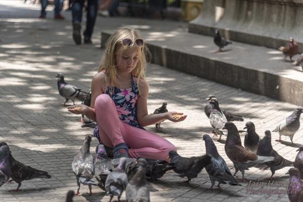 Feed the Birds by IainHamer