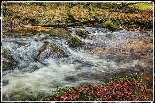 River Fowey by Snaphappyannie