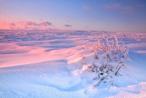Winter by Buffalo_Tom