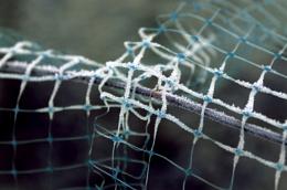 Frozen Plastic Netting