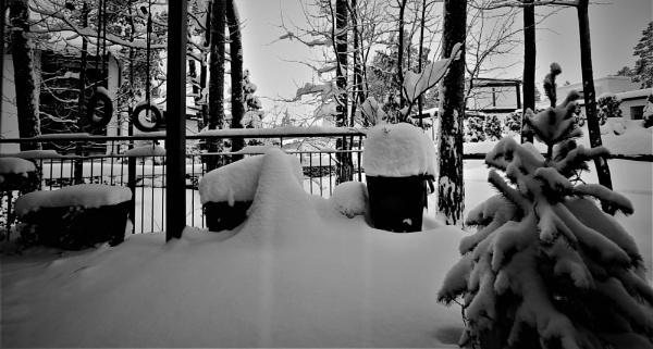 WINTER .....8 by maratsuikka