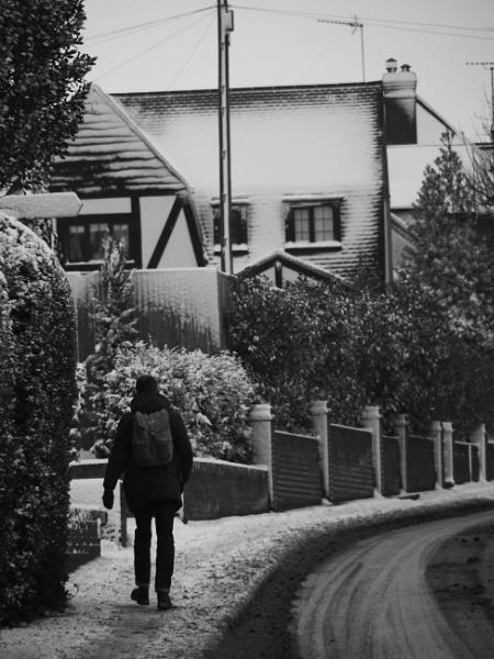 Snow Walk by dannyr