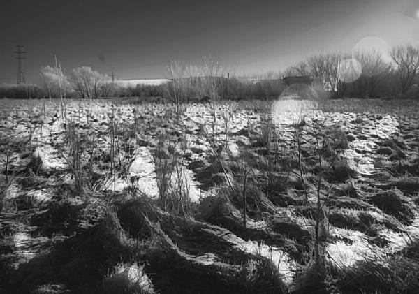 Low Winter Sun by RLF