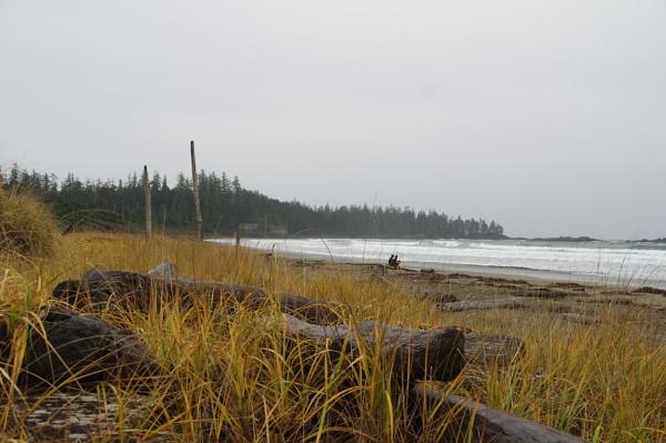 Wikkanininish Beach by Friendlyguy