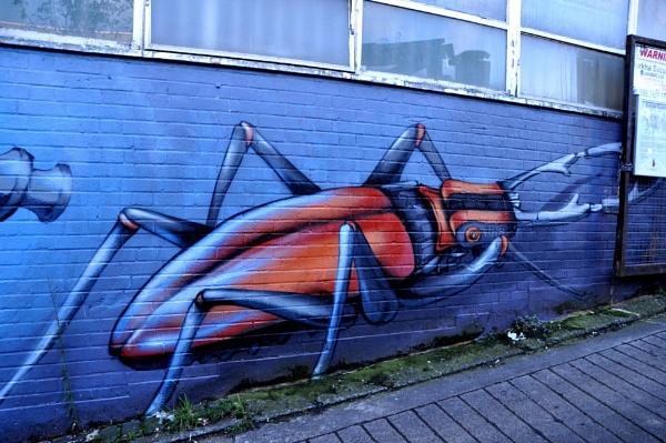 Bug on the wall !! by Chinga