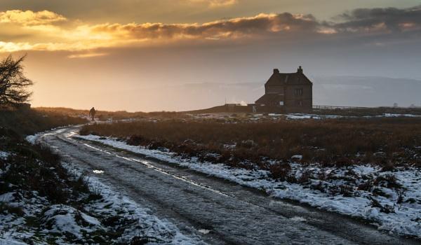 Winter Walk by Trevhas