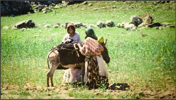 Qashqi Ladies - near Shiraz, 1978 by GeorgeP