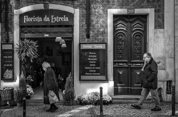 Florista da Estrela II by nonur
