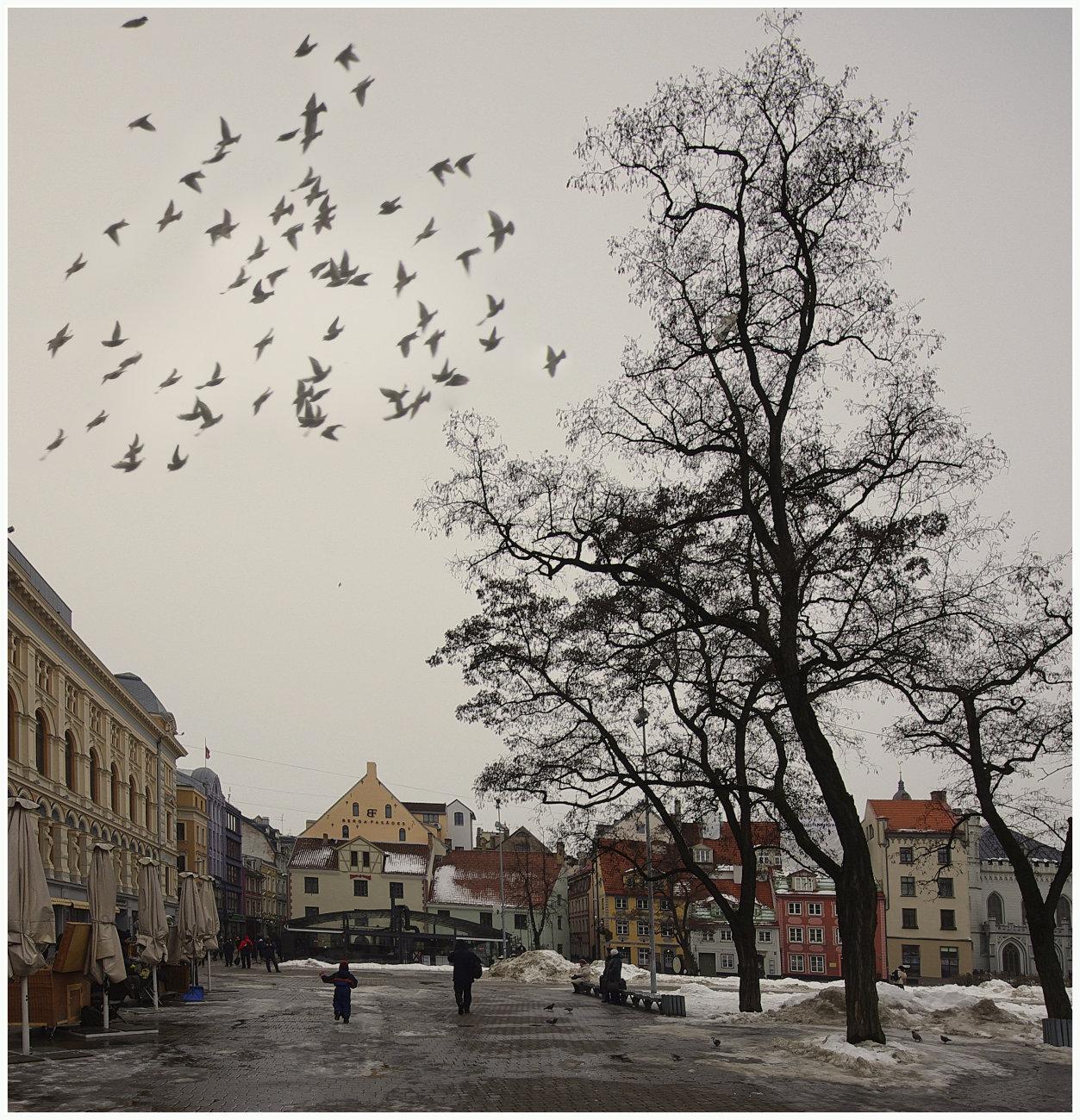 The old Riga.