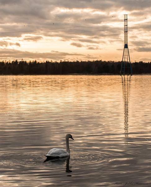 Helsink , Meilahti. -2. by kuvailija