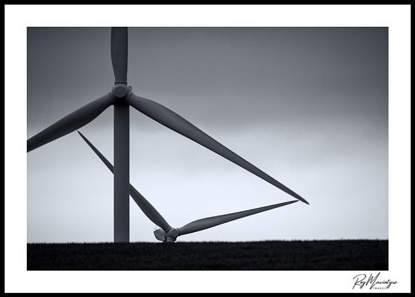 Wind Seekers by Roymac