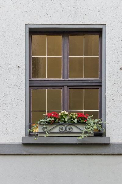 Window with flowers by rninov