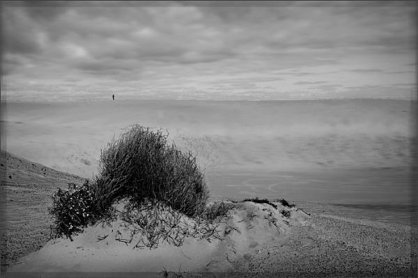 All Alone by AlfieK