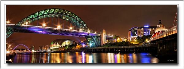 Bridges on the Tyne by shedhead