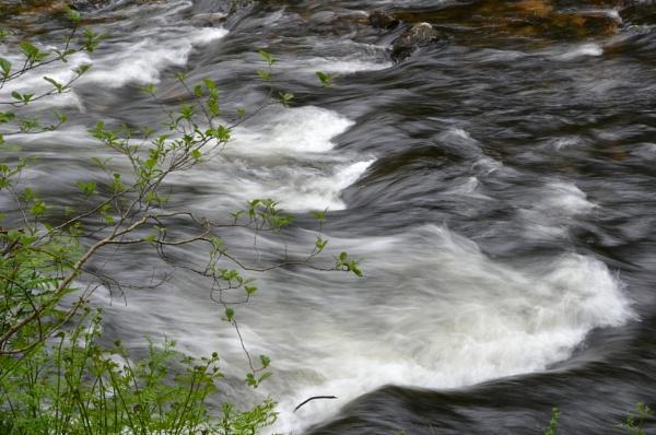 flowing water by derekd
