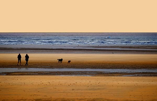 Walking the Dog by sandwedge